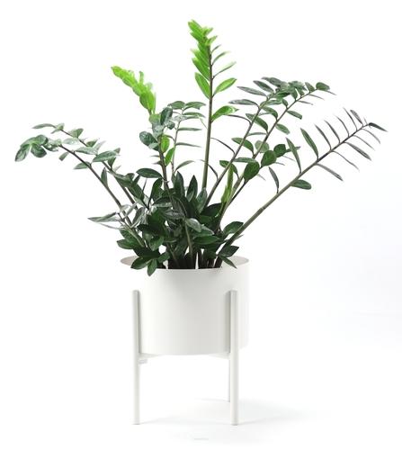 Fém virágágyás MOYENE Exclusive 37cm fehér