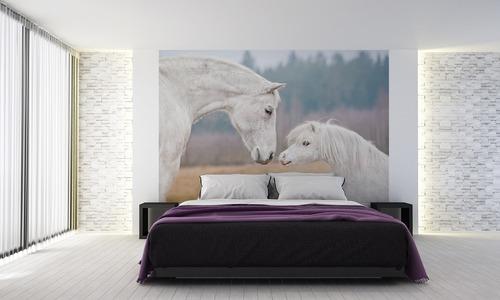 Faliképes lovak, shetlandi póni, fehér ló, fali tapéta